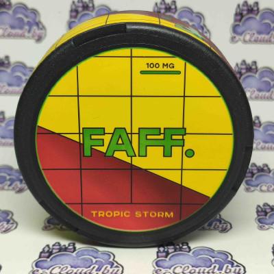 Купить жевательную смесь (снюс) Faff - Тропический шторм - 100мг/г. с доставкой в Минске и почтой по Беларуси.