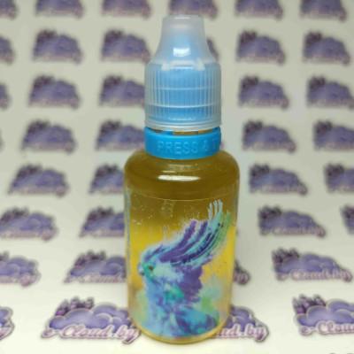 Купить жидкость для электронных парогенераторов Cloud Parrot 2.0 Salt - Blue